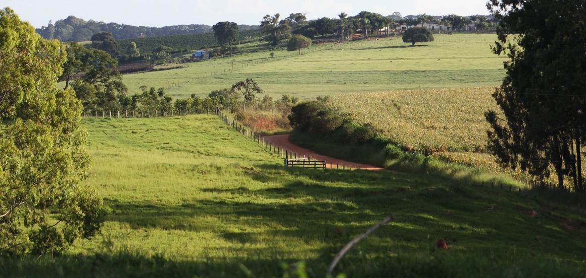 paisagem_estrada